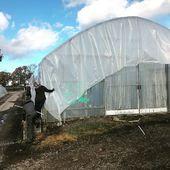 Hier nous avons profité du beau soleil mayennais pour réparer et remplacer la couverture d'un de nos tunnels. Merci aux équipes pour cet excellent travail  #pepinieres #renault #mayenne #preparationdhiver #tunnel #greenhouse