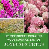 Les Pépinières Renault vous souhaitent de joyeuses fêtes!  La pépinière sera fermée du vendredi 21 Décembre jusqu'au lundi 7 Janvier 🎄☃️🎅 #pepiniere #pepinieres #renault #plantes #plante #bruyeres #hydrangea #vanillefraise #sedum #greenroofs